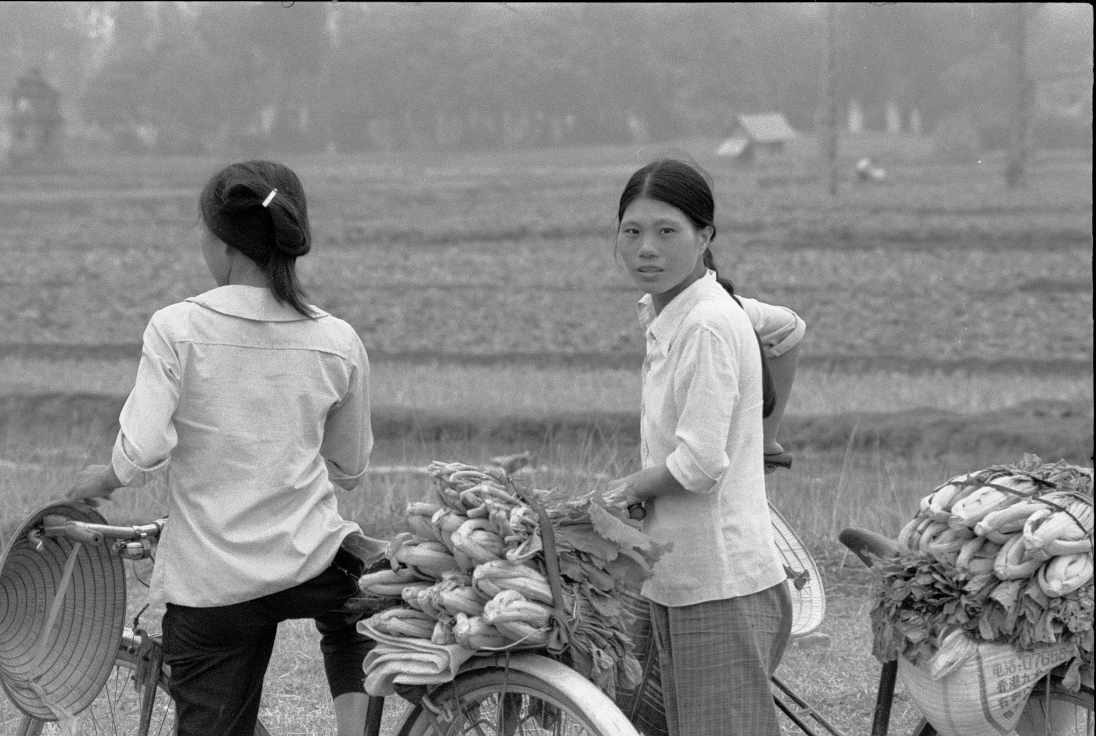 Viet Nam©Y.Cuillandre-101