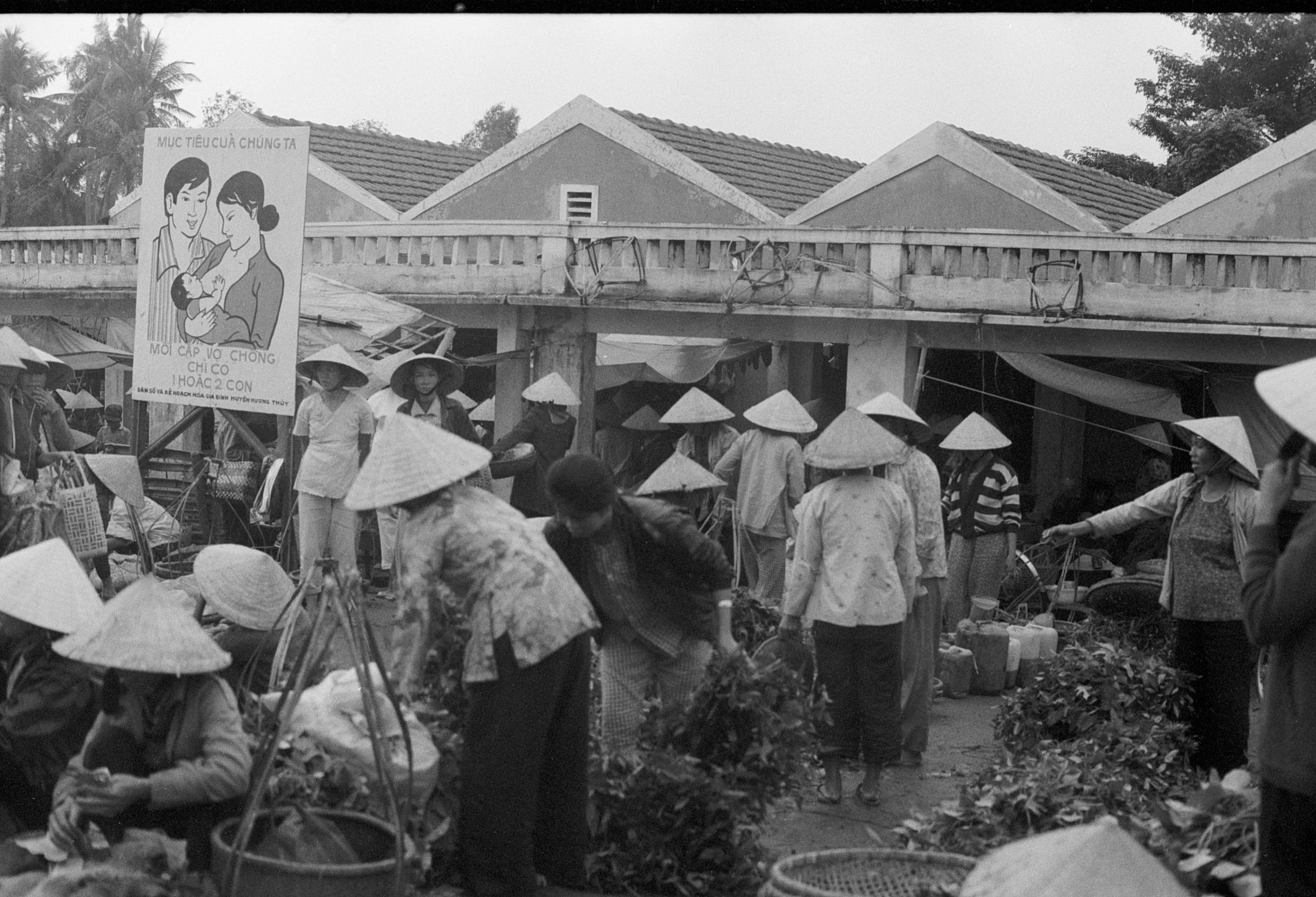 Viet Nam©Y.Cuillandre-112